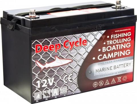 Аккумулятор глубокого разряда Marine Deep Cycle AGM 6FM100D-X
